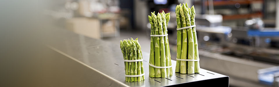 Perfect asparagus bundles